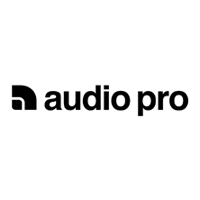 Audio Pro Business